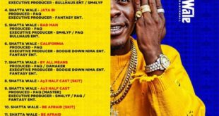 Shatta Wale Wonder boy track list